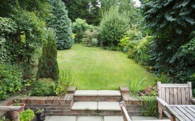 Har I nogle irriterende stubbe i haven?