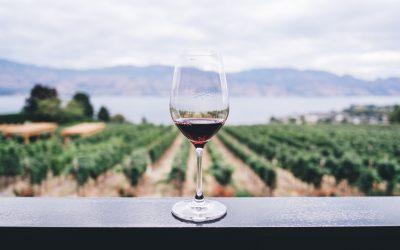 Vil du smage på royale vine?